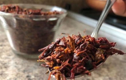 Rich in protein, crickets have been a food source in Mexico since pre-Hispanic times. (Julio Guzmán/Zenger)